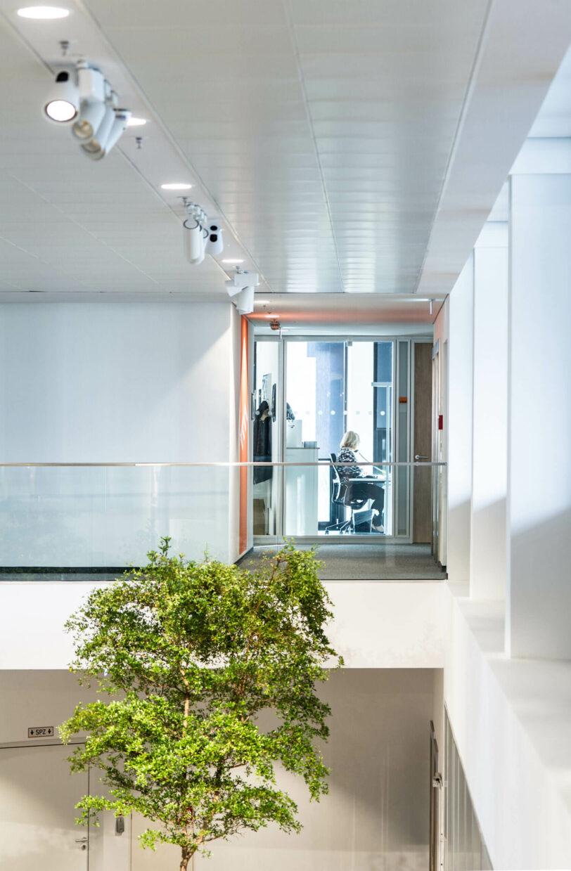 House of Elements   Nattler Architekten Essen
